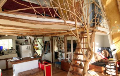 Выбор лестницы для дома — виды
