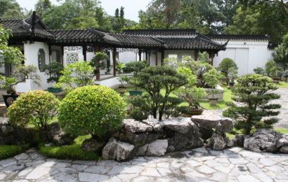 Очарование китайского ландшафта