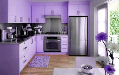 Особенности кухни баклажанового цвета