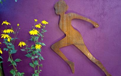 Фиолетовые нотки в дизайне летнего сада
