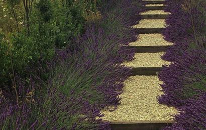 Грунтовые ступени для сада своими руками