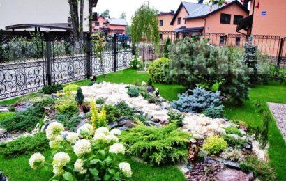 Как озеленить участок около дома?