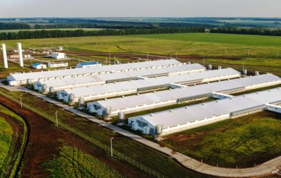Преимущества использования PIR и PUR сэндвич-панелей при возведении агропромышленных комплексов