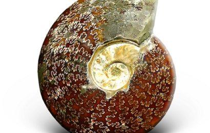Фен-шуй талисманы: Топ-10 могущественных кристаллов (часть 2)