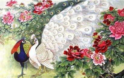 Павлин по фен-шуй – символ гордости и процветания