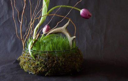 Декоративная корзинка с живой травой и мхом