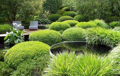 Работы в саду весной: 7 свежих идей